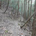 すぐに山肌をひっかいたような踏み分け道に