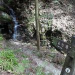小さいですが、金仙滝です