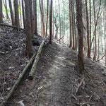 山の斜面を道なりに登ります