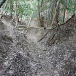 素掘りび道をどんどん下ります