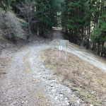 下ると、平子谷林道と合流します。