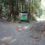 左は志賀峠への林道山中線。自然歩道は右へ。ここまで1㎞