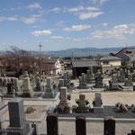 お墓越しに琵琶湖が望めます。