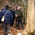 Exkursionsleiter Roland Senf vor einem Spechtbaum
