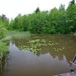 Dreitagesexkursion ins Schwäbische 1. bis 3. Juni 2012