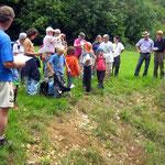 Informationen über Amphibienvorkommen im Wangental ...