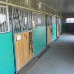 Die Pferdeboxen