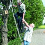 Anbringen von Fledermauskästen, vor allem in den zu erhaltenden Obstbäumen, im neuen Baugebiet Pfaffenäcker am Wasserturm in Kochendorf.