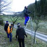 Obstbaumschnittkurs in Gundelsheim-Tiefenbach mit Uwe Genzwürker, Landratsamt Heilbronn, 2011.