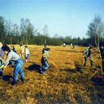 Pflegeinsatz der Jugendgruppe auch am Wollmatinger Ried / Bodensee (1982).