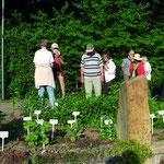 """Exkursion """"Auf Spurensuche - wilde Kräuter im Bad Rappenauer Salinengarten und im Zeitwald"""" mit der Kräuterfrau Ingrid Hagner, Obereisesheim."""