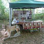 Detlef Klein, der NABU Wolfbeauftragte, gab Wissenswertes und Interessantes über den Wolf weiter.