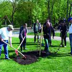 Gemeinsam mit Bürgermeister Peter Dolderer, Bad Friedrichshall, wurde am 14.04.2011 eine Elsbeere, Baum des Jahres 2011, am Schachtsee gepflanzt.