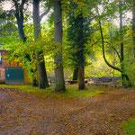 Wassermühle in Eitzmühlen im Herbst II