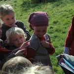 Project 'vlinders': koolwitjes kweken in de klas en daarna vrijlaten.