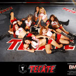 TECATE BOX TEAM