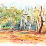 Forêt-21x30cm-60€-n°18609