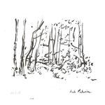 Sous-bois, Aube-15x21cm-30€-n°17334