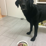 Darf ich jetzt bitte essen? O.O