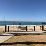Am Beach in Shark Bay, Monkey Mia