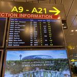 am Changi Airport