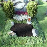Herbstbepflanzung mit Abdeckung aus Latschenkiefer