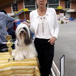 BOB Tibet Terrier