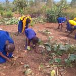 Hosiana-Kinder arbeiten gemeinsam im Garten.
