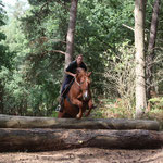 Jumping fun at Bissell Wood