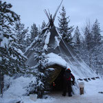 Tenda Kota nell'allevamento husky