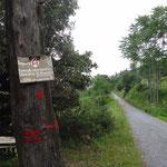Il sentiero alla Cappelletta di Sant'Anna