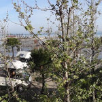 """Il campeggio di Kavaje al mattino: """"Camping Paemer"""""""