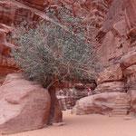 L'ingresso del Khaz'ali Canyon