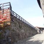 Viale di accesso al Castello