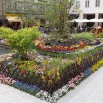 Villach: giardini fioriti