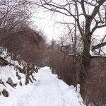 Il sentiero in discesa verso l'Alpe del Viceré