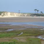 008_San Vicente de la Berquera_Playa de  Oyambre