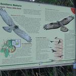Cartelli esplicativi del Sentiero Natura nel Parco del Beigua
