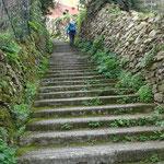 La lunga scalinata che sale a San Rocco