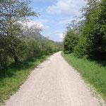 Questo tratto di pista corre vicino alla Drava e lontano dalle strade