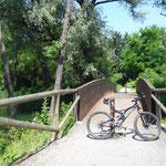 La ciclabile sul Lago di Comabbio