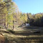 Alpe Corte d'Ardui