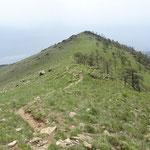 Il sentiero in discesa dalla cima