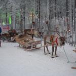 Slitta trainata da renne al villaggio di Babbo Natale