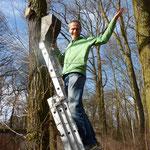 Fledermauspate: Udo Schindler