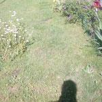 Garten mit Schatten