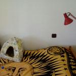 Katzen Zimmer