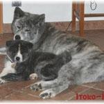 Unsha mit ihrer Urgroßmutter Tattoi