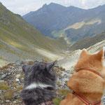 unterwegs auf dem Steinbock-Höhenweg - unsere anstrengenste, aber auch schönste Tour