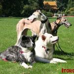 mit Donna und Farina im Bad Homburger Kurpark